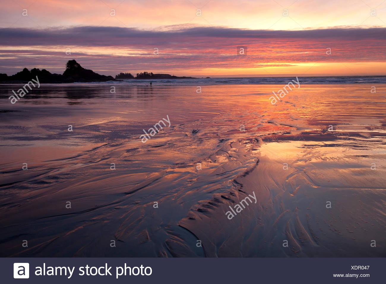 Cox bay near tofino stock photos cox bay near tofino stock cox bay and sunset point at sunset near tofino british columbia canada on vancouver nvjuhfo Image collections
