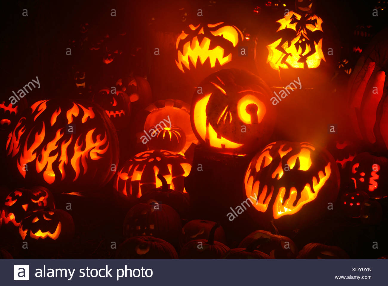 glowing jack o' lanterns, roger williams park zoo, providence, rhode