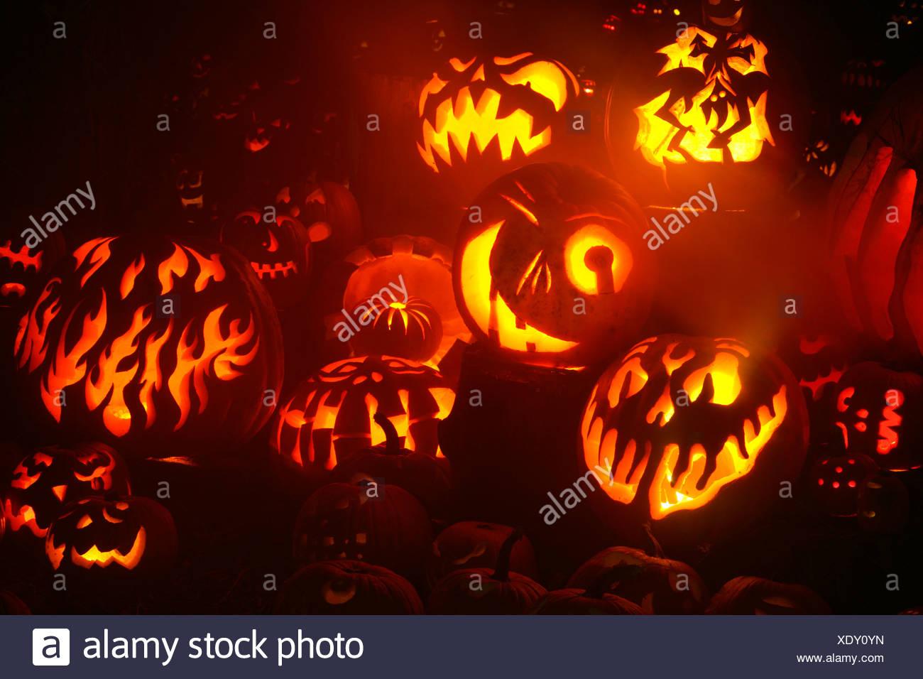 glowing jack o' lanterns, roger williams park zoo, providence, rhode