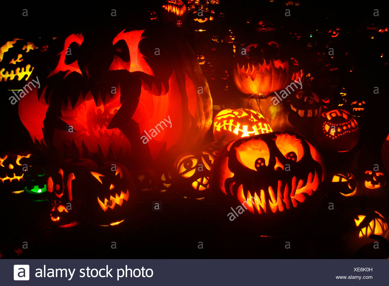 jack o' lanterns lit up at night, roger williams park zoo