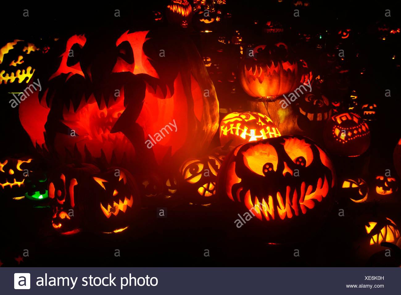 jack o' lanterns lit up at night, roger williams park zoo