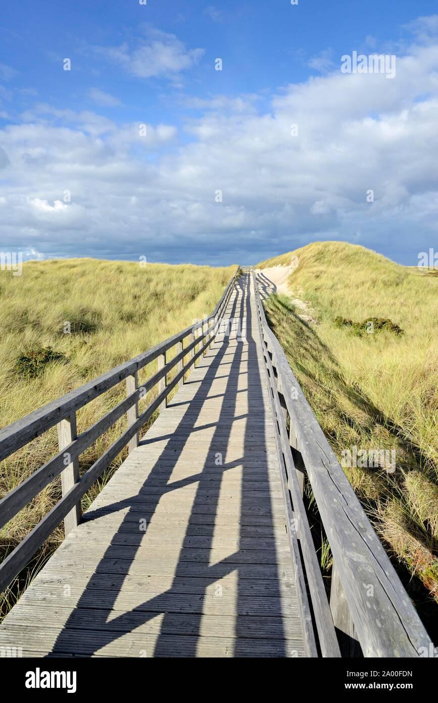 Die Promenade führt durch die Dünen zum Strand in der Nähe von Kampen, Sylt, Nordfriesische Inseln, Nordsee, Nordfriesland, Schleswig-Holstein, Deutschland Stockfoto