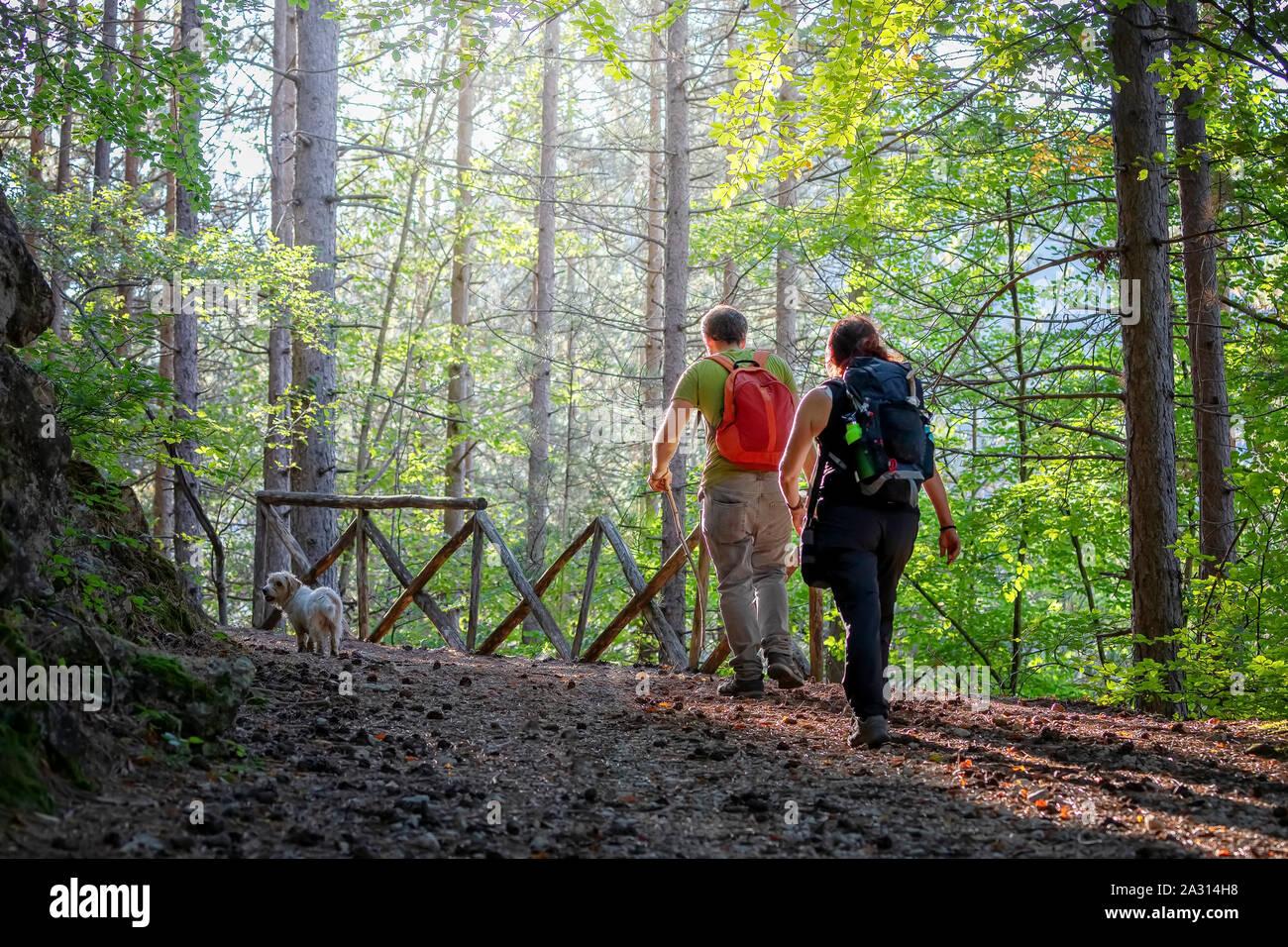 Villetta Barrea (AQ), Italien - 29 September, 2019: Wanderer auf dem Berg Pfad in den Wald, in der Natur. Ein Mann, eine Frau und ihr Hund, zu Fuß auf den Weg, Stockfoto