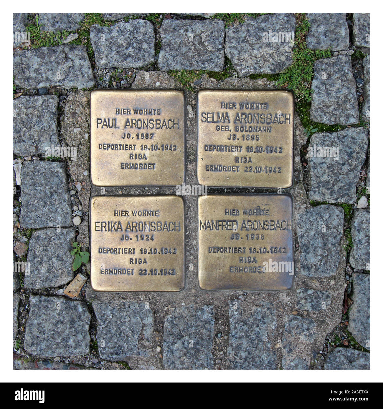 Pflaster in Berlin (Deutschland) Stockfoto