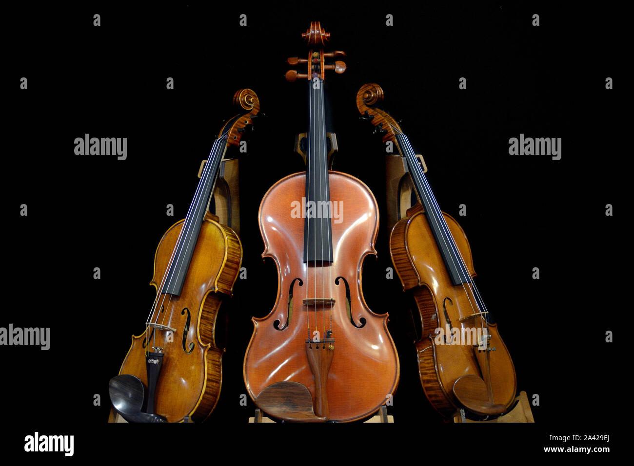 Italien, Lombardei, Cremona, Cremona, Musica Internationale Ausstellungen und Festivals 2019, Geigen stehend Stockfoto