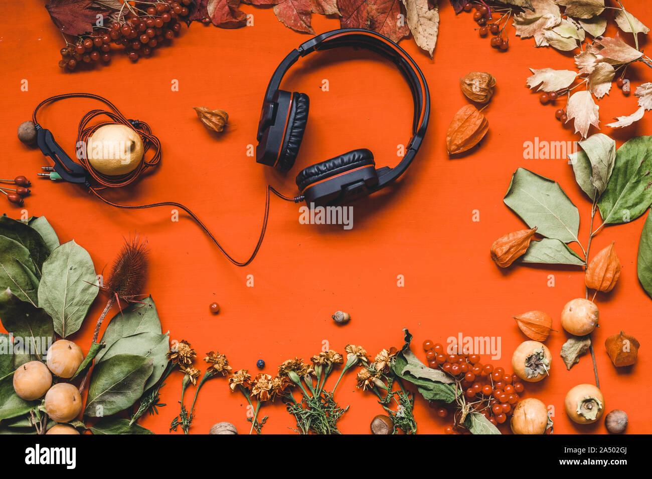 Herbst Hintergrund Musik Kopfhörer gelbe Blätter in den roten Tisch Stockfoto
