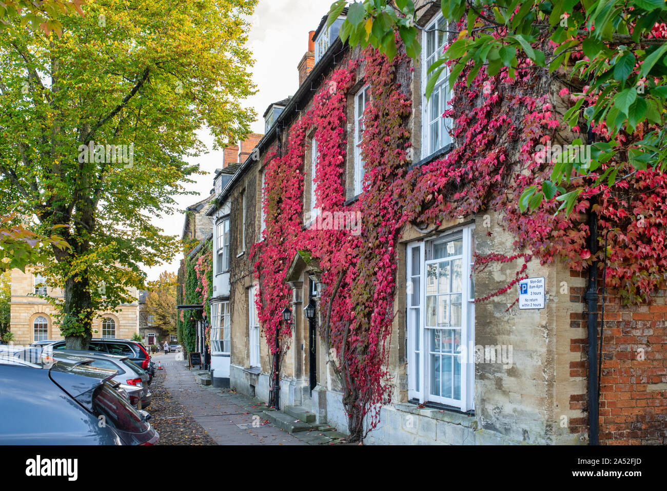 Parthenocissus Tricuspidata. Boston Efeu auf ein Haus im Herbst in Woodstock, Oxfordshire, UK Stockfoto