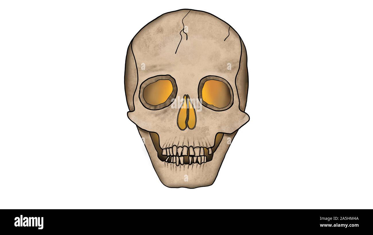 Unheimlich glühenden Schädel von innen isoliert auf weißem mit Rissen - Spooky Abbildung im Comic-stil. Stockfoto