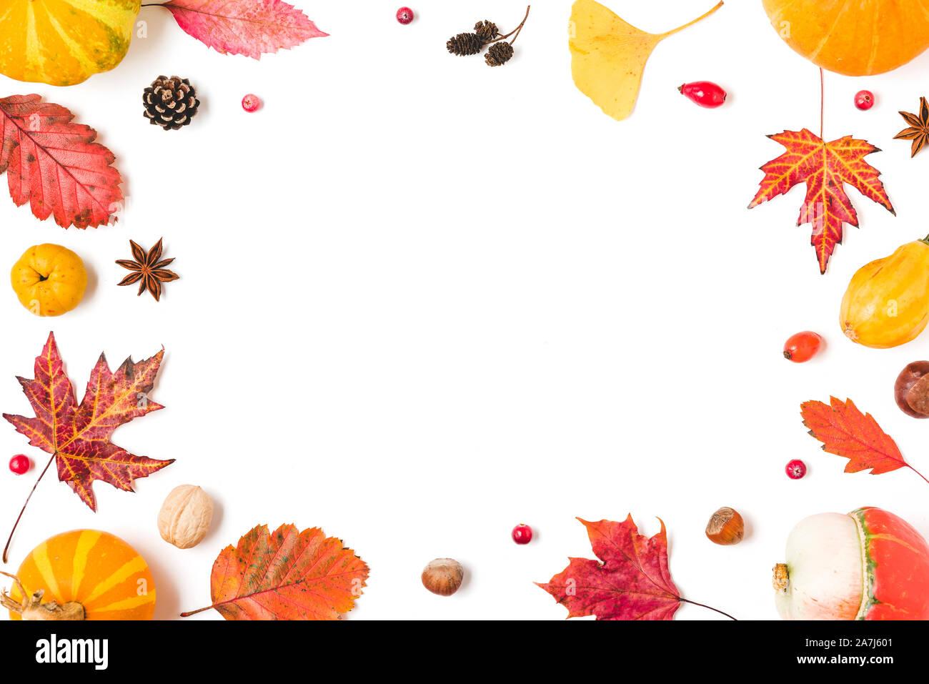 Herbst Komposition. Rahmen aus Herbstlaub, Kürbisse, Blumen, Beeren, Quitte, Muttern auf weißem Hintergrund. Herbst, Halloween, Thanksgiving Day conce Stockfoto