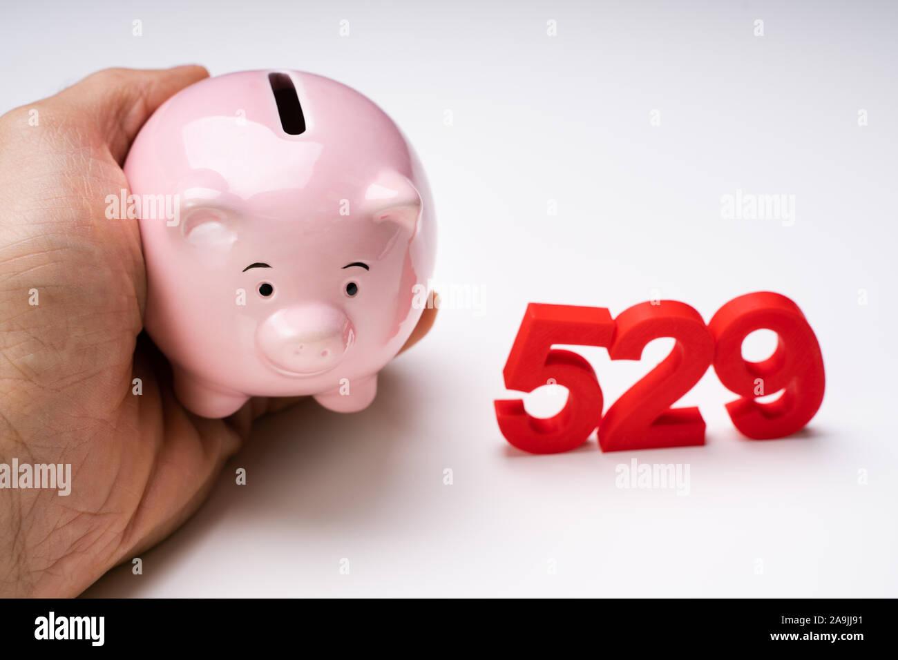 Person's Hand, die rosa Sparschwein in der Nähe von 529 Nummer, College Heilsplan Konzept Stockfoto