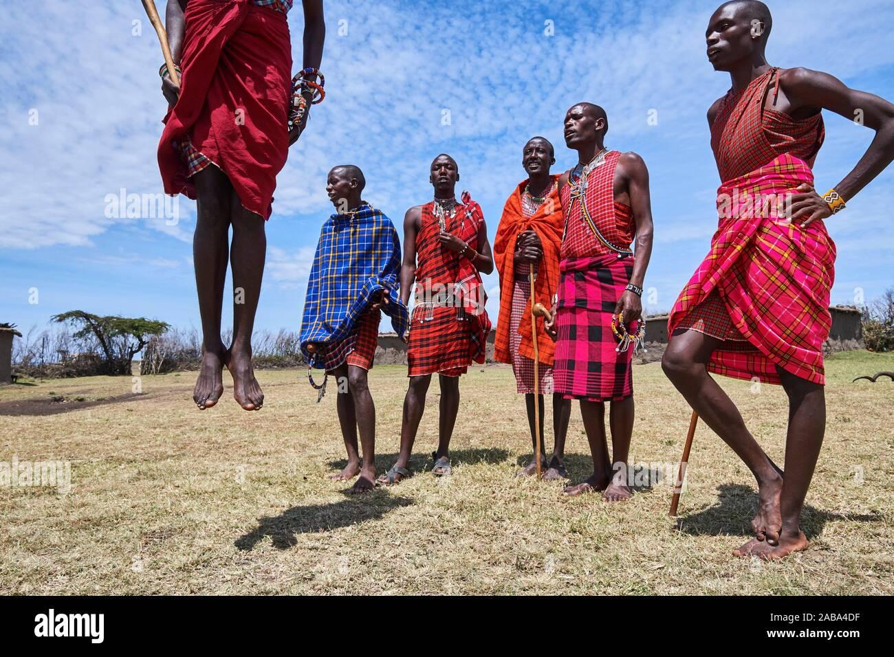 Junge Maasai Männer Durchführen einer traditionellen springen Tanz, Masai Mara National Reserve, Kenia. Stockfoto