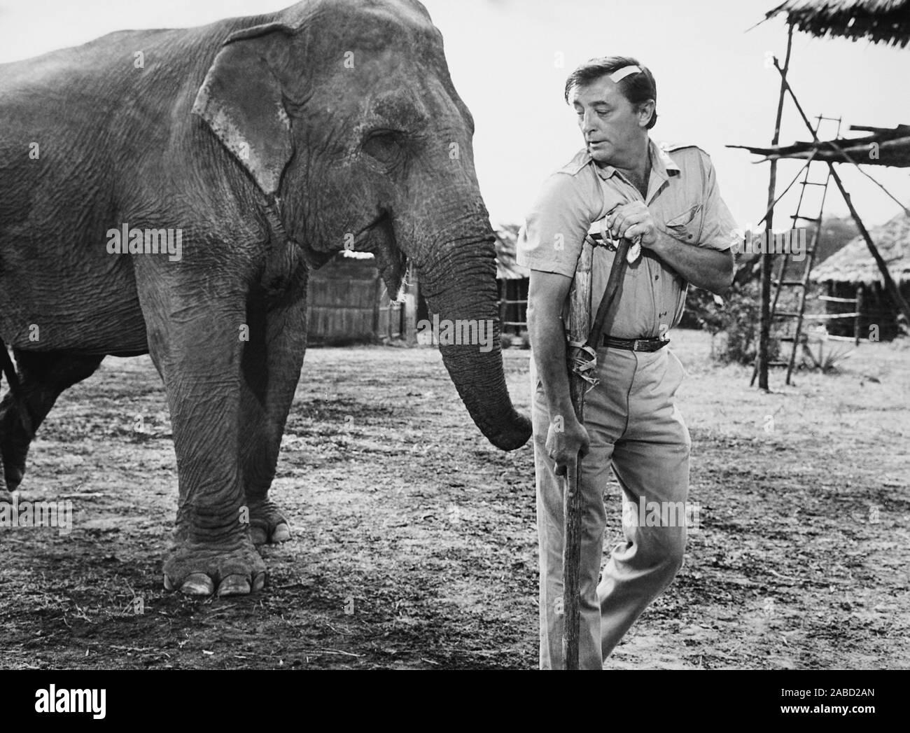 MISTER MOSES, Robert Mitchum, 1965 Stockfoto