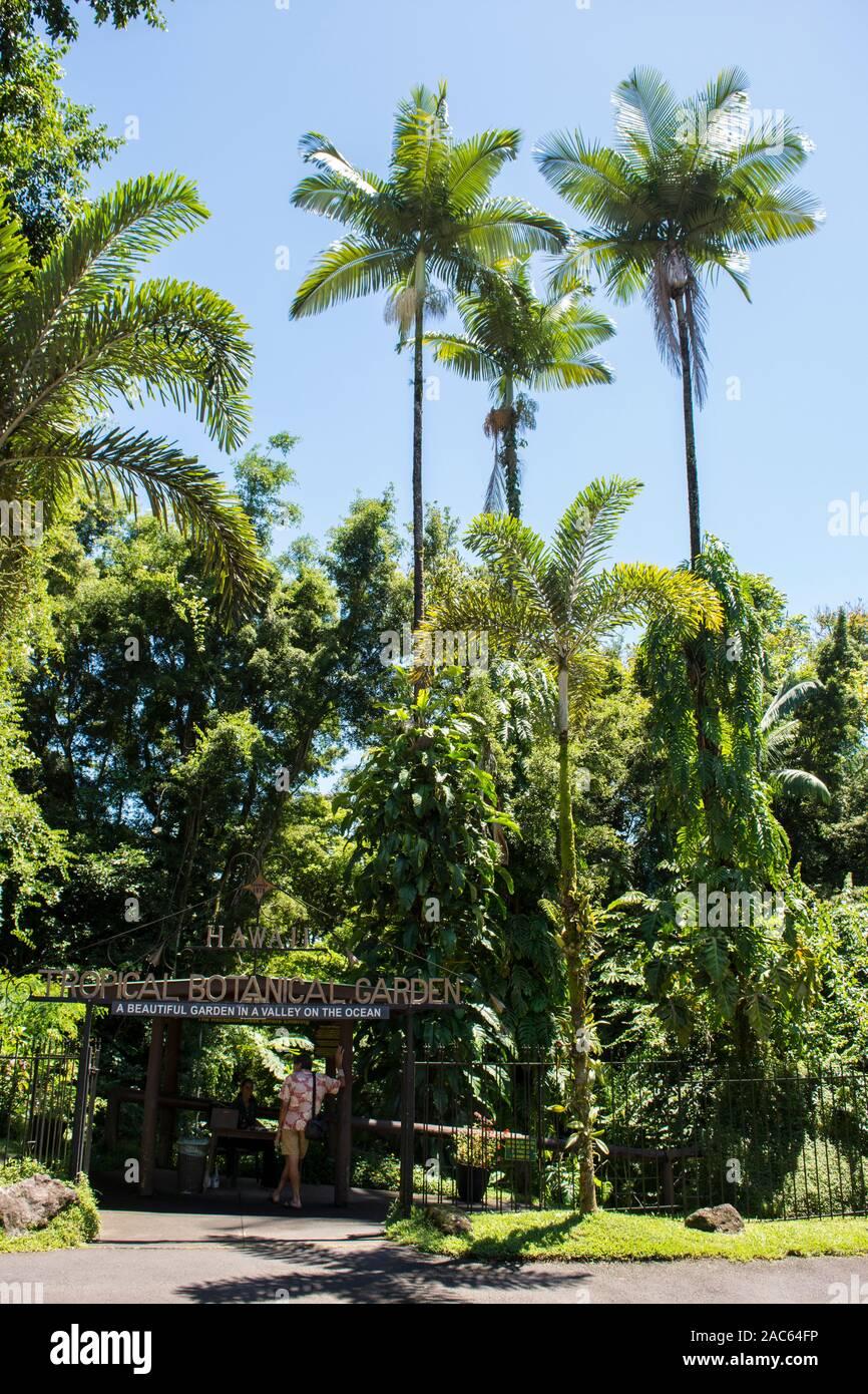 Der Eingang zum Hawaii Tropical Botanical Garden in Papa' Ikou in der Nähe von Hilo, Big Island von Hawaii. Stockfoto
