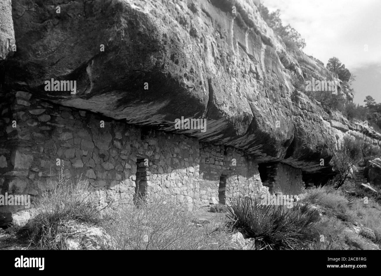 Kliff-Wohnungen von Pueblo- und Hopistämmen im Walnut Canyon, bewohnt bis 1200 n.Chr., 1962. Cliff dwellings von Pueblo und Hopi Stämme in Walnut Canyon, bis 1200 a.C., 1962 bewohnt. Stockfoto