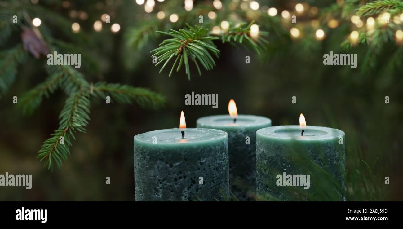 Kerzenlicht, tanne Zweig, Kerzen Stockfoto