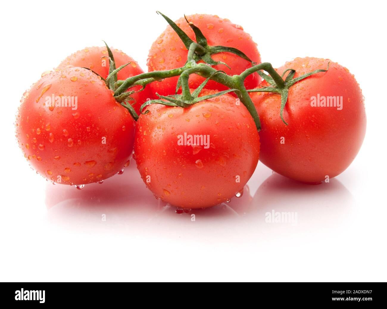 Rote reife Tomaten mit Wassertropfen auf weißem Hintergrund Stockfoto