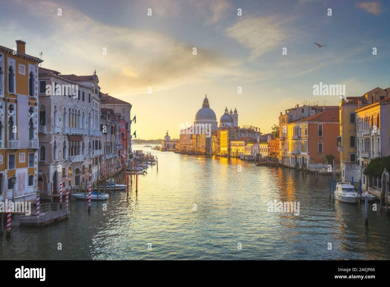 Blick auf den Canal Grande in Venedig, Santa Maria della Salute Kirche Sehenswürdigkeiten bei Sonnenaufgang. Italien, Europa. Stockfoto