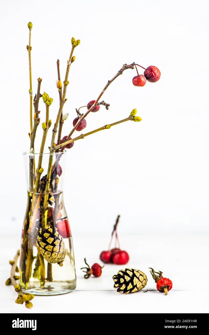 Herbst Winter Bouquet. hausgemachte Reed Diffuser. self-care Routine. Kopieren Sie Platz Stockfoto