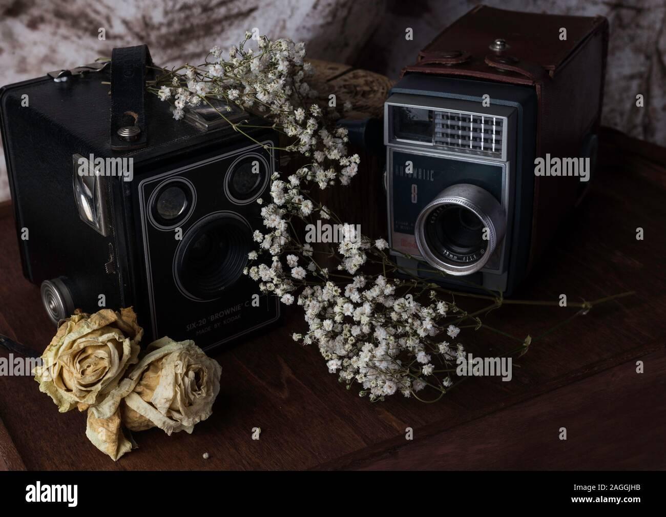 Vintage film Kameras, Studio, mit alten und neuen Blumen schaffen einen Kontrast eingestellt Stockfoto