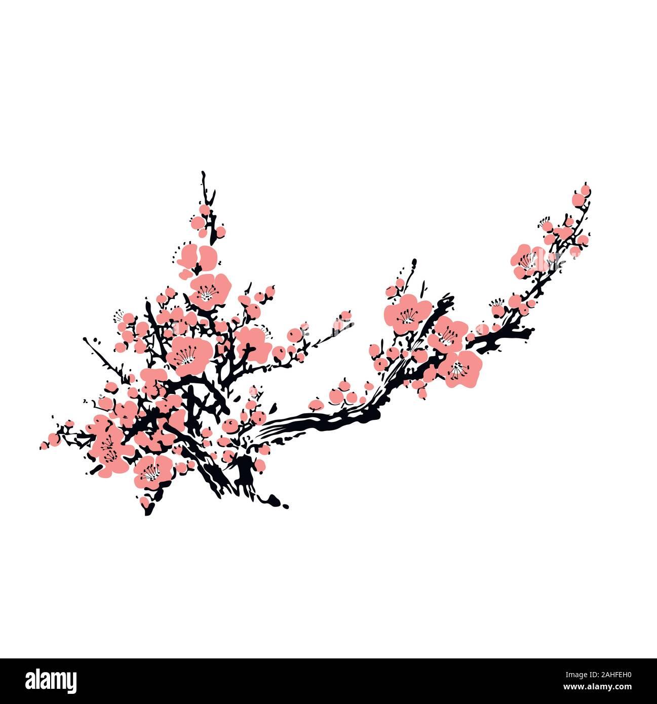 Cherry Blossom Bei Vorlage Mit Hand Gezeichnet Zweig Mit Pink Cherry Blumen Bluhen Realistische Sakura Blossom Japanische Kirsche Baum Chinesische Oder Japanische Traditionelle Zeichnen Vector Illustration Stock Vektorgrafik Alamy