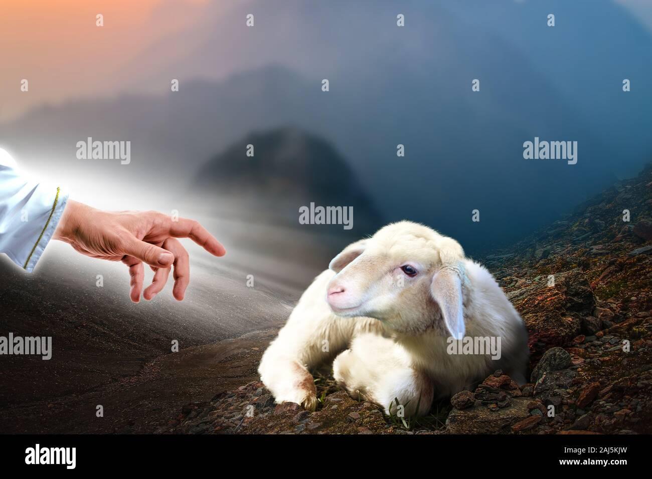 Jesus die Hand ausstrecken, um ein verlorenes Schaf. Biblische Thema Konzept. Stockfoto