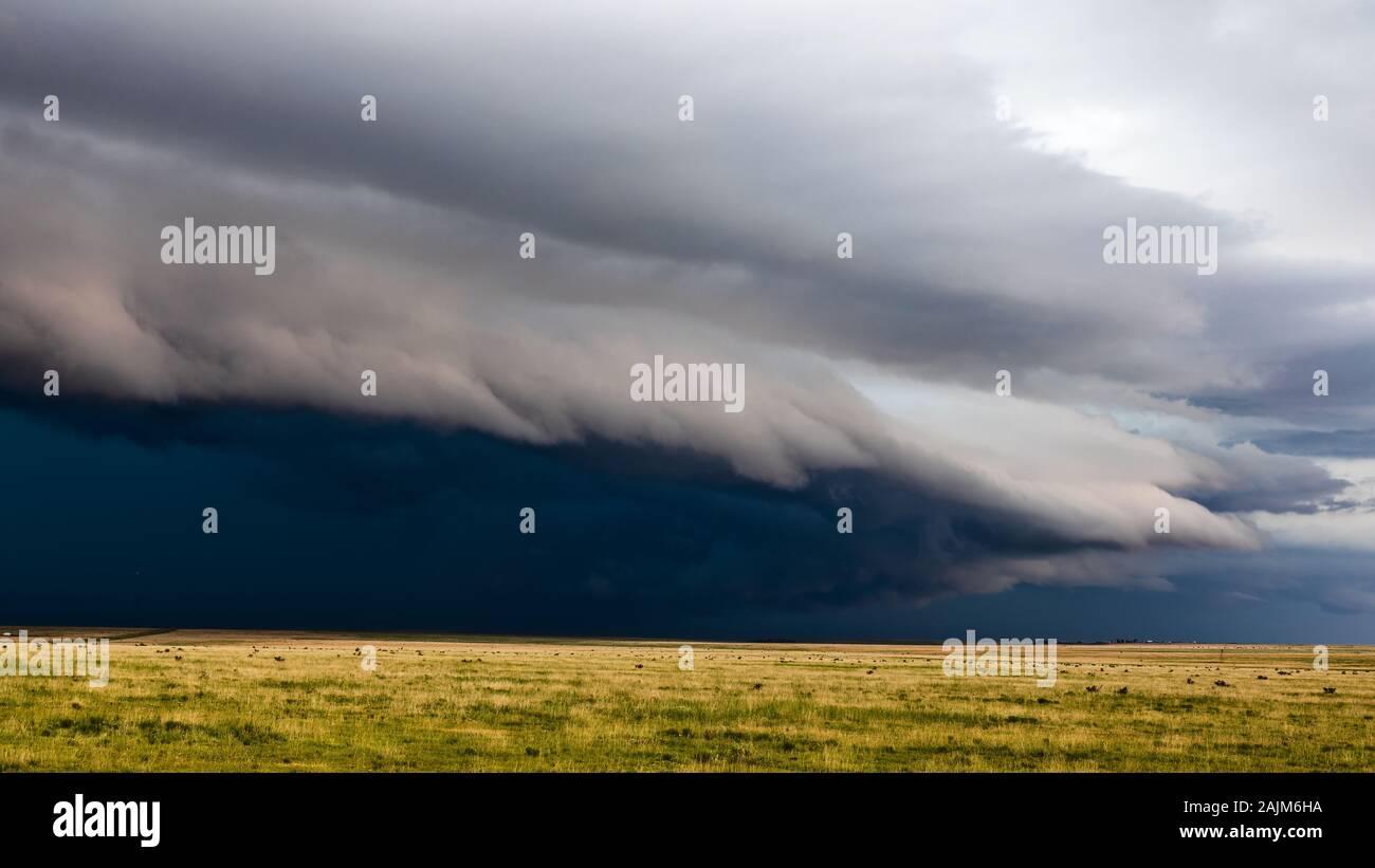 Eine dramatische Shelf cloud Führt eine kommende schwere Gewitter über die hügelige Grasland des südöstlichen Colorado. Stockfoto