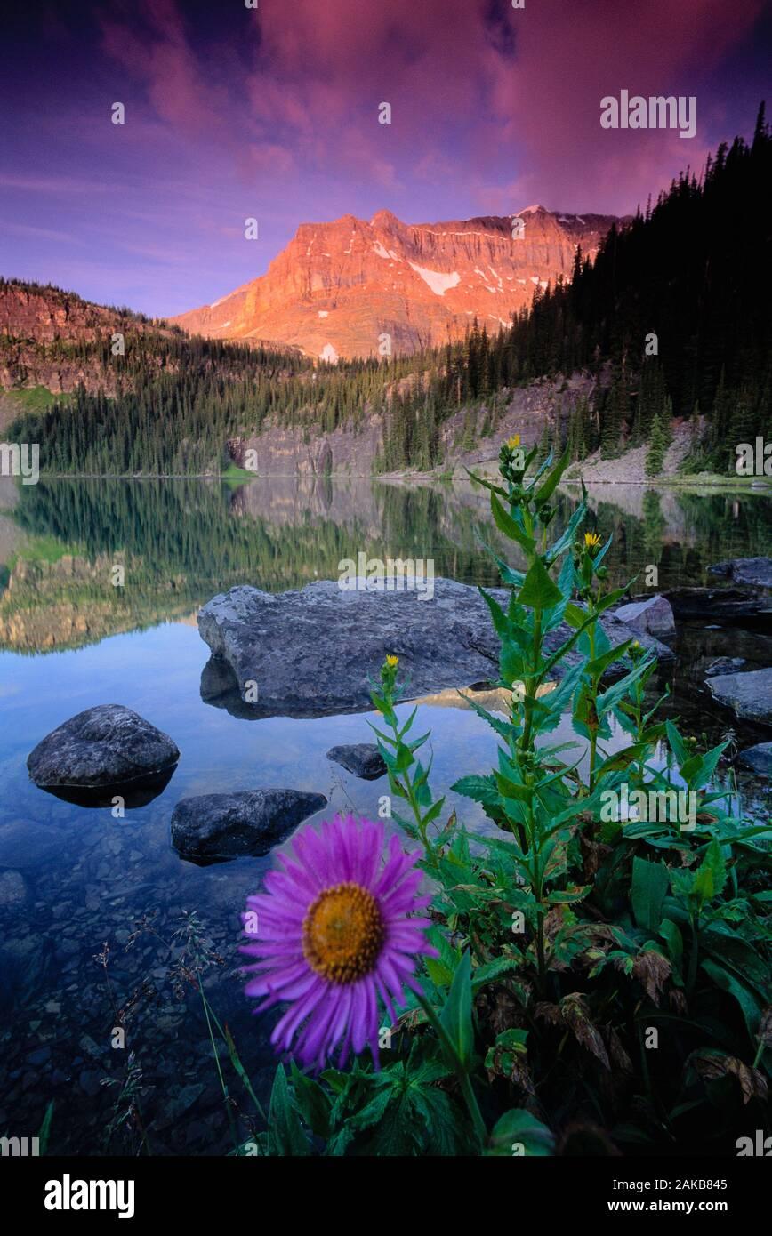 Landschaft mit Ägypten, den See und die Berge, Banff National Park, Alberta, Kanada Stockfoto