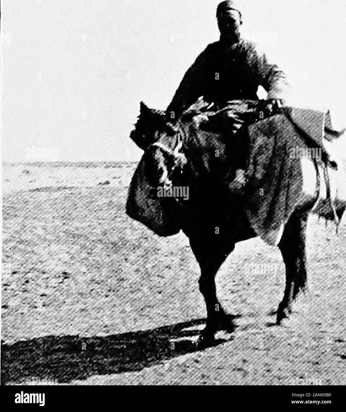 Chinesisch Turkestan mit Wohnwagen und Gewehr. Der AMBAN von Khotan. Stockfoto