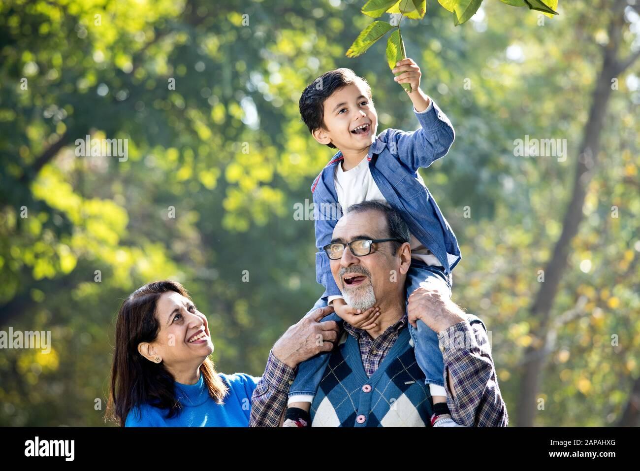 Großmutter mit Enkel sitzt auf der Schulter des Großvaters im Park Stockfoto