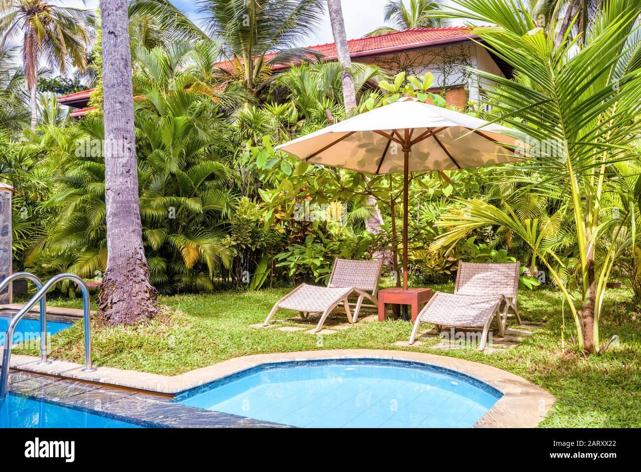 Pool Swimming Yard Home House Luxury Garden Water Stockfotos