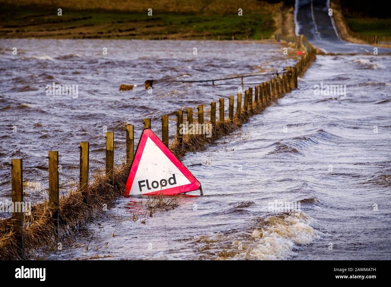 Der Sturm Ciara verursacht, dass der Fluss Medwin (ein Zufluss des Flusses Clyde) seine Ufer in South Lanarkshire, Schottland, platzt, was zu einer weit verbreiteten Überschwemmung führt. Stockfoto