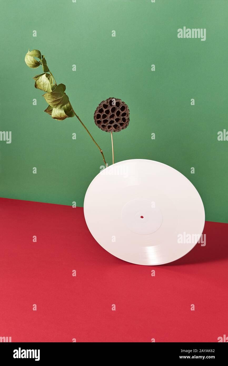 Zusammensetzung trockener Bud, Branche und weißem Vinyl audio Aufzeichnungen auf einem doppelt rot grün Hintergrund mit Platz für Text Stockfoto