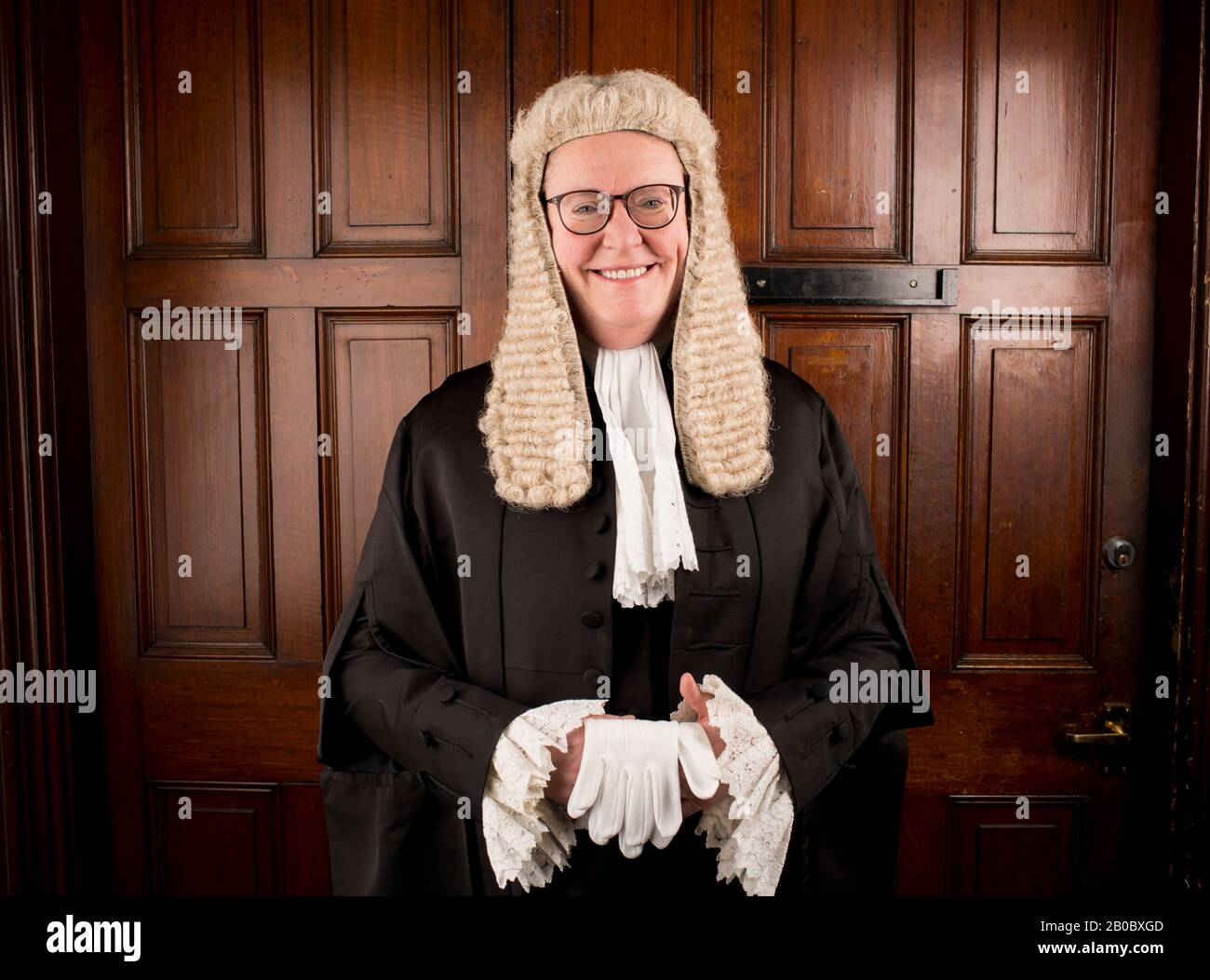 Professor Elwen Evans QC Stockfoto