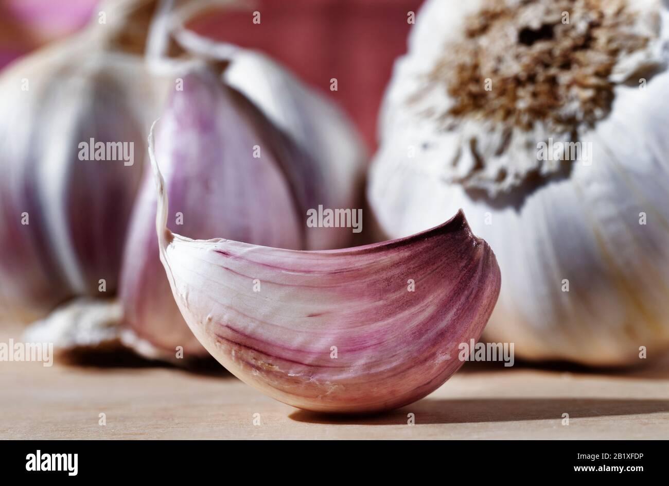 Schöne weiße - lila Knoblauchzehe auf Holztisch im Hintergrund Knoblauchzwiebeln Stockfoto
