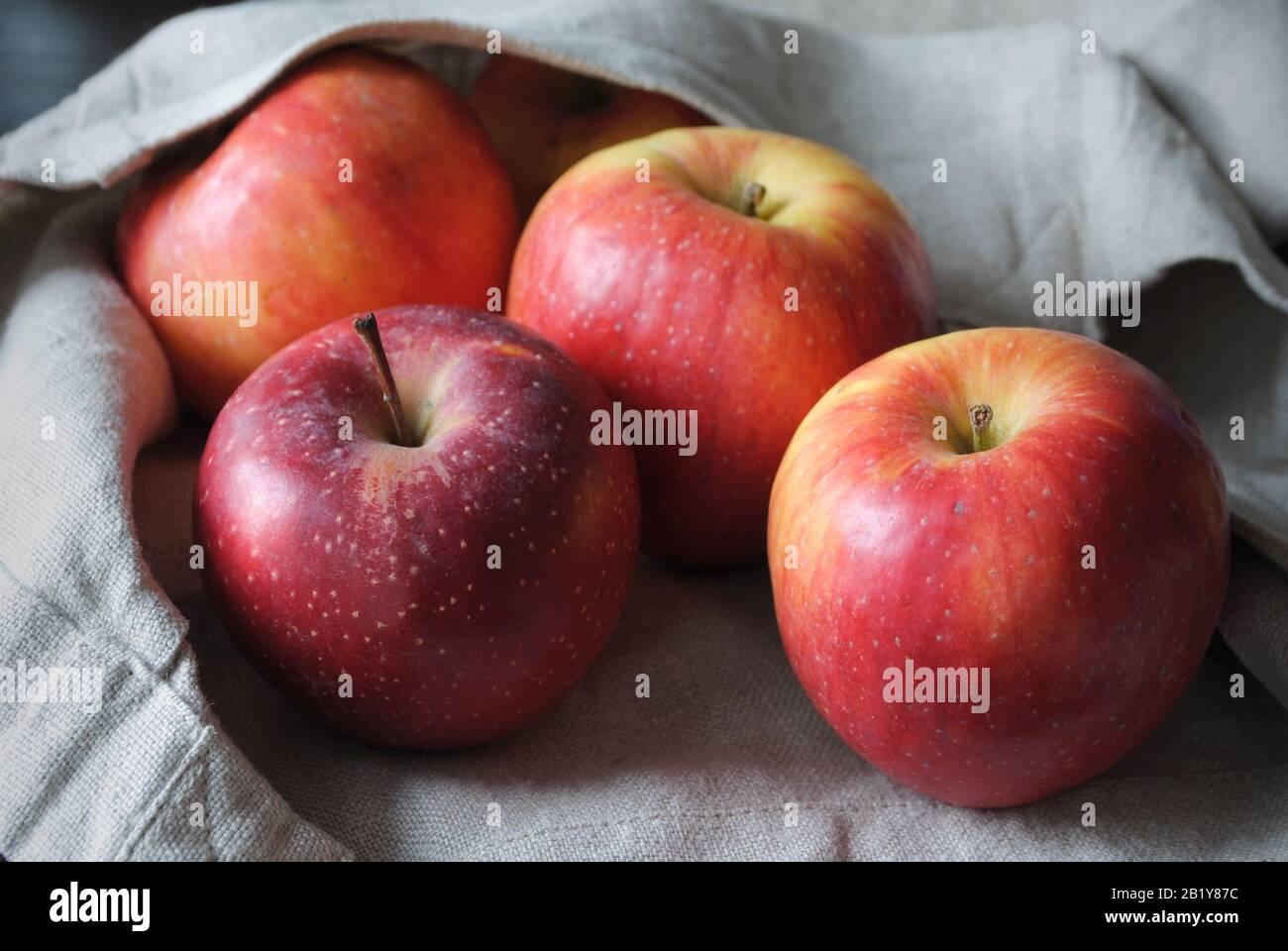 Nahansicht einer Gruppe von frischen natürlichen, bunten Gelb/roten Äpfeln aus biologischem Anbau mit einem neutralen Farbbeutel aus Leinen Stockfoto