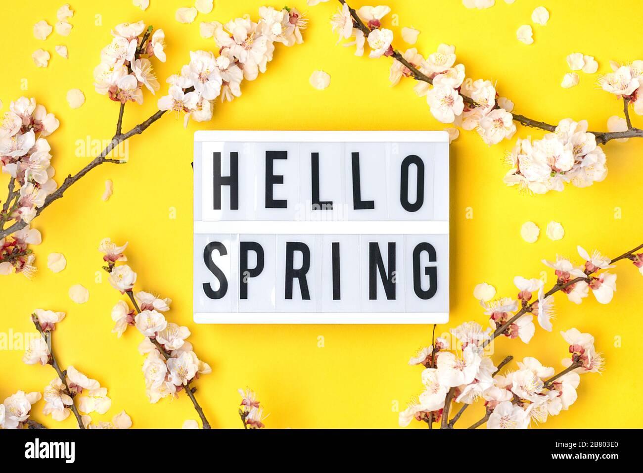 4 Servietten Frühling Tiere Hunde *Hallo*
