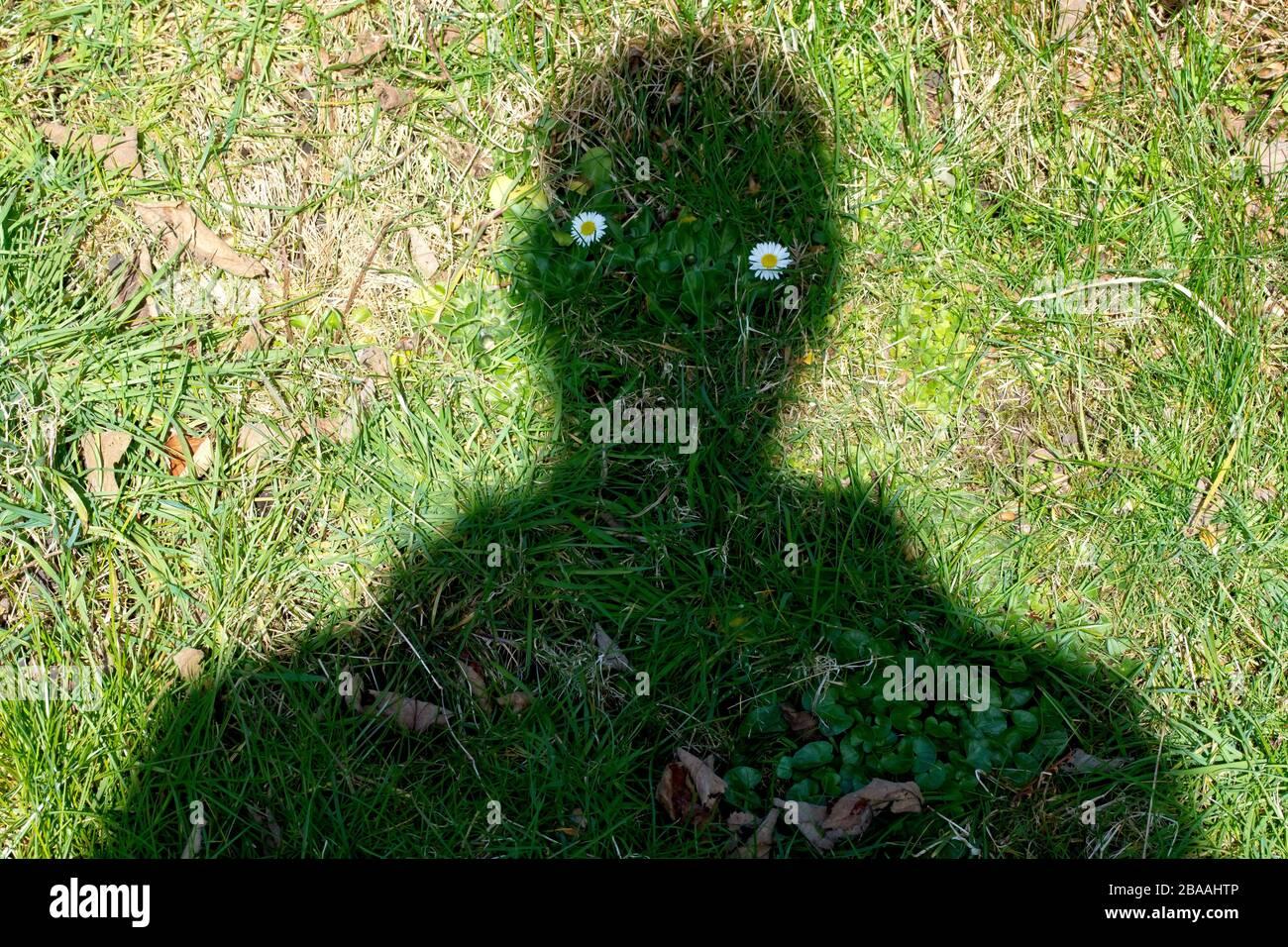 Ein Schattenmann, das Ergebnis einer seltsamen Gegenüberstellung von Objekten und Timing. Er wirkt bedrohlich und einschüchternd oder traurig und furlorn, je nach Stimmung. Stockfoto