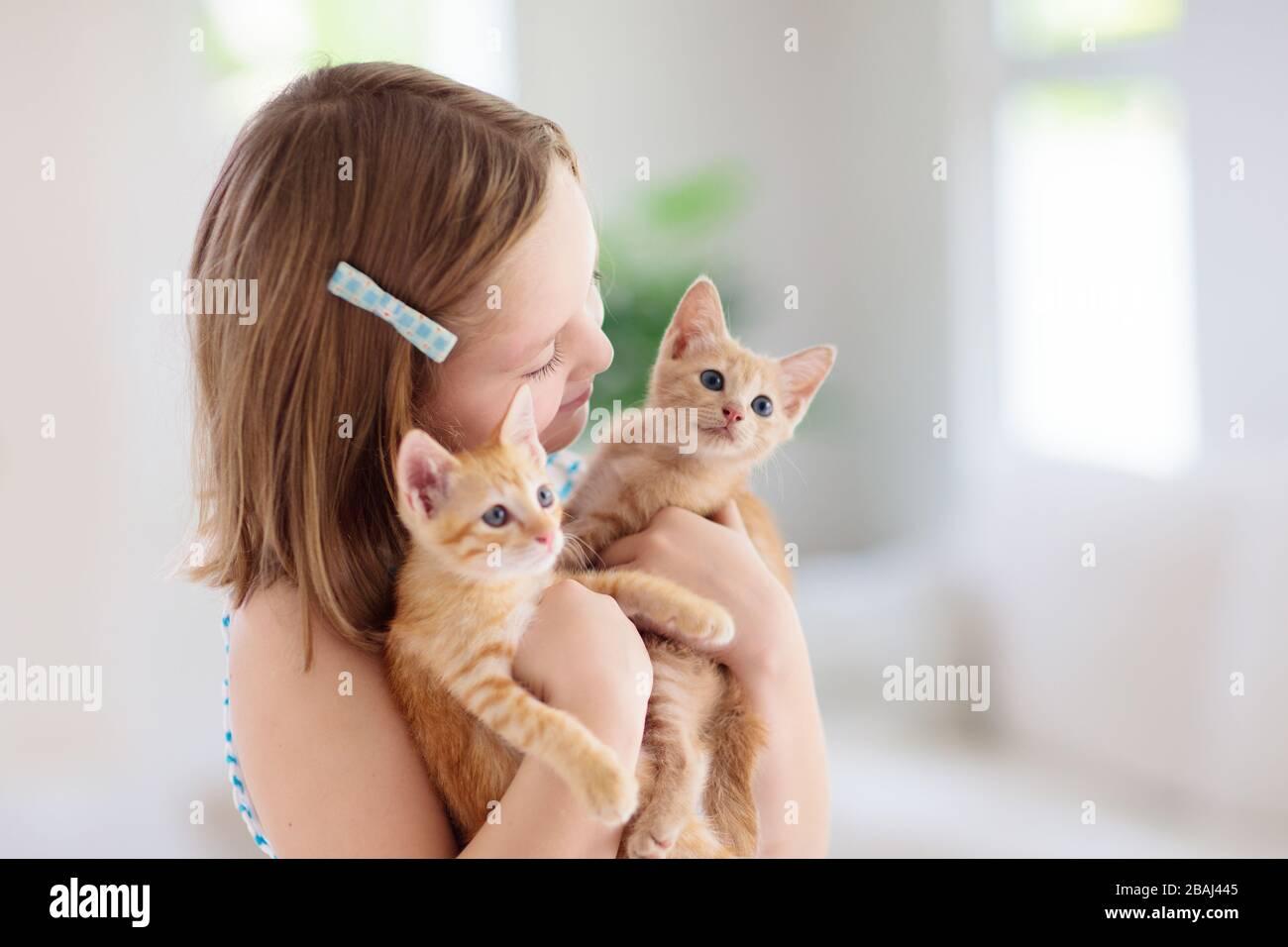 Kind, das eine Babykatze hält. Kinder und Haustiere. Kleines Mädchen umarmt niedliches kleines Kätzchen zu Hause. Haustier in der Familie mit Kindern. Kinder mit Haustieren. Stockfoto