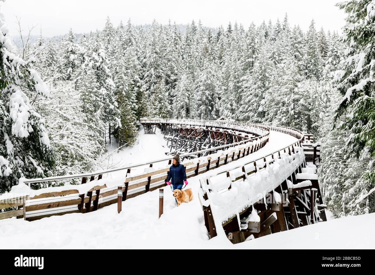 Eine Frau und ihr Hund spazieren über einen schneebespannten Kinsol Trestle in der Nähe von Shawnigan Lake, British Columbia. Stockfoto
