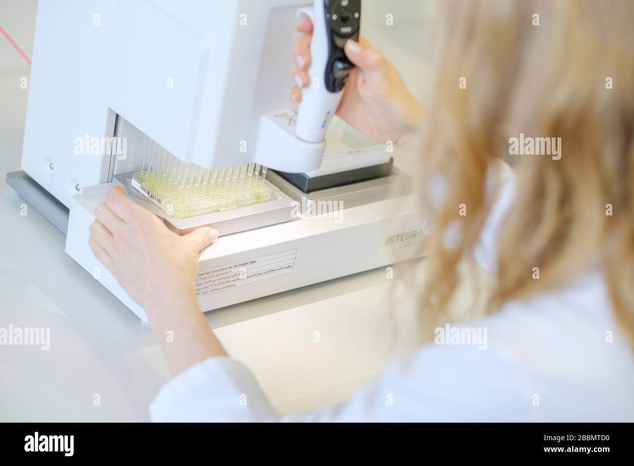Brunswick, Deutschland. April 2020. Die Wissenschaftlerin Katharina Kleilein testet anhand einer Farbreaktion im Labor des Life-Science-Unternehmens Yumab, ob Antikörper auf einer Elisa-Platte an ein Antigen gebunden sind. Das Start-up-Unternehmen erforscht die Entwicklung von menschlichen Antikörpern und versucht so, Medikamente gegen Covid-19 zu entwickeln. Credit: OLE Spata / dpa / Alamy Live News Stockfoto