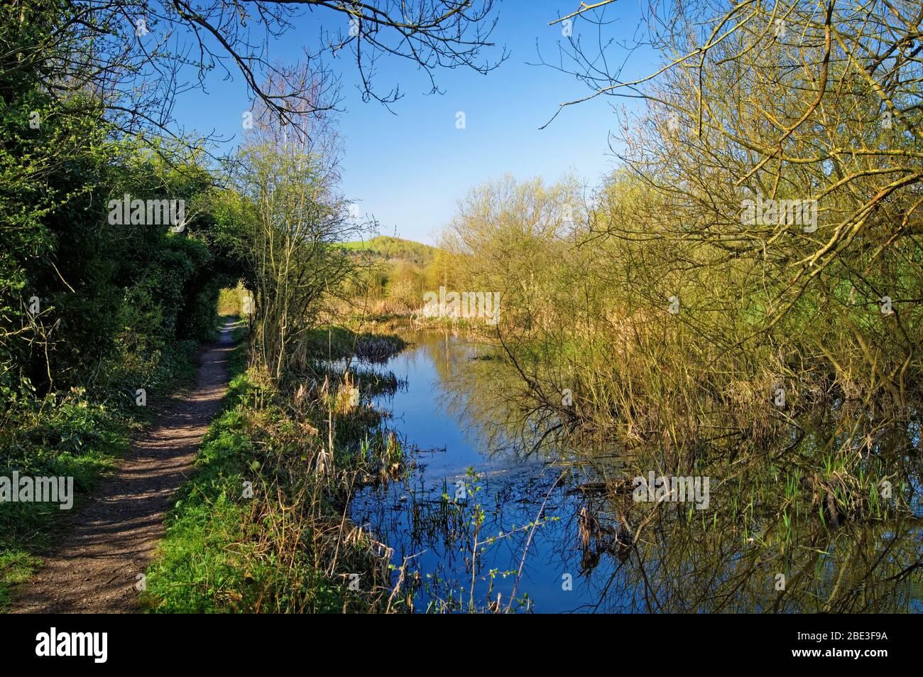 UK, South Yorkshire, Barnsley, Elsecar Canal und Fußweg Stockfoto