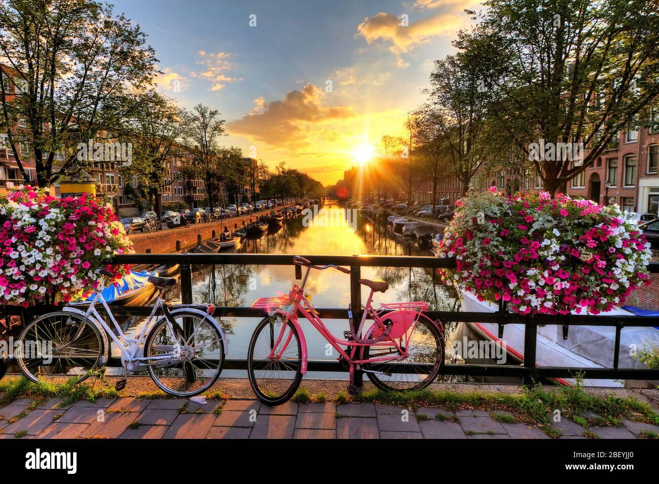 Schöner Sonnenaufgang über Amsterdam, Niederlande, mit Blumen und Fahrrädern auf der Brücke im Frühling Stockfoto