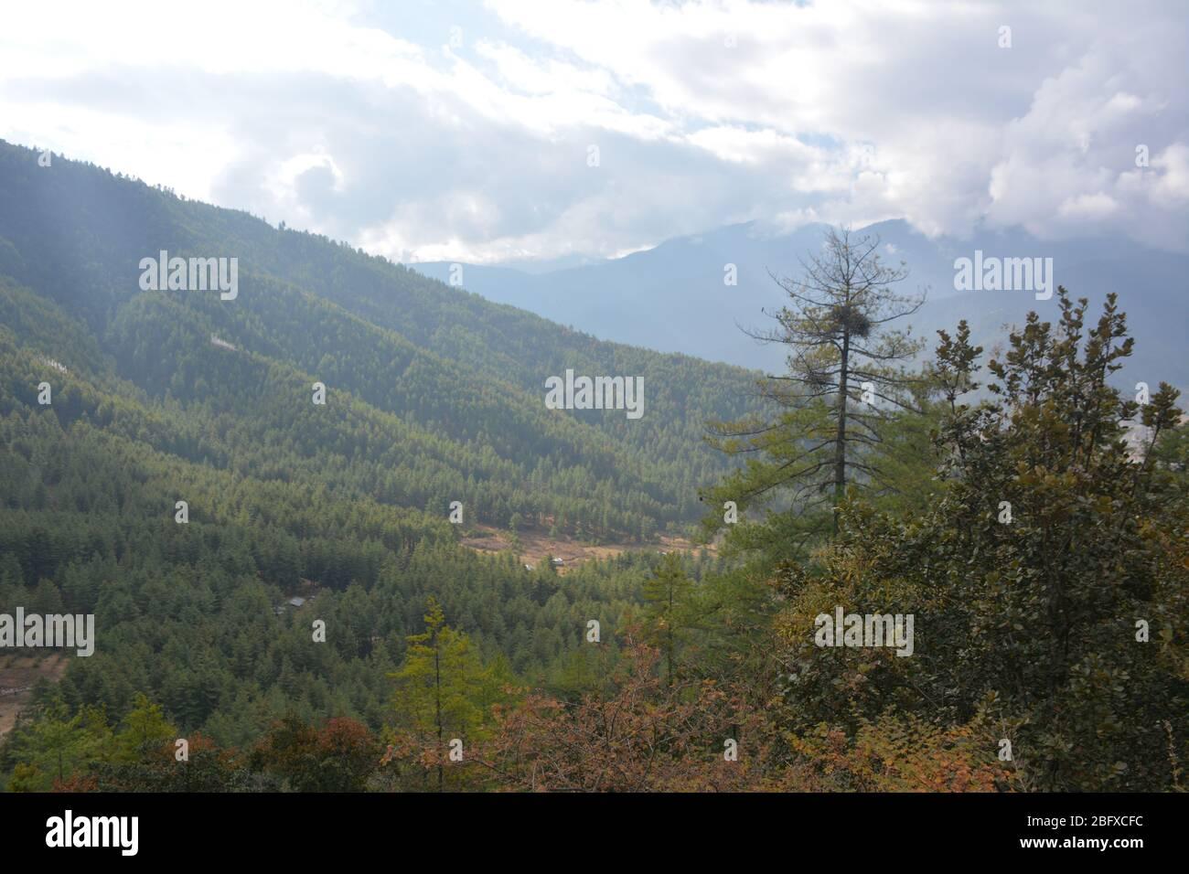 Die Wanderung zum Tiger's Nest Kloster (auch bekannt als der Taktsang Weg nach Paro Taktsang) ist Bhutans beliebteste Touristenattraktion. Stockfoto
