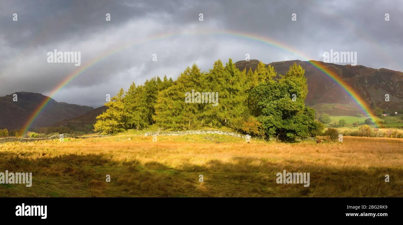 Regenbogen über einem Baumbestand in Little Langdale, Cumbria, Großbritannien Stockfoto