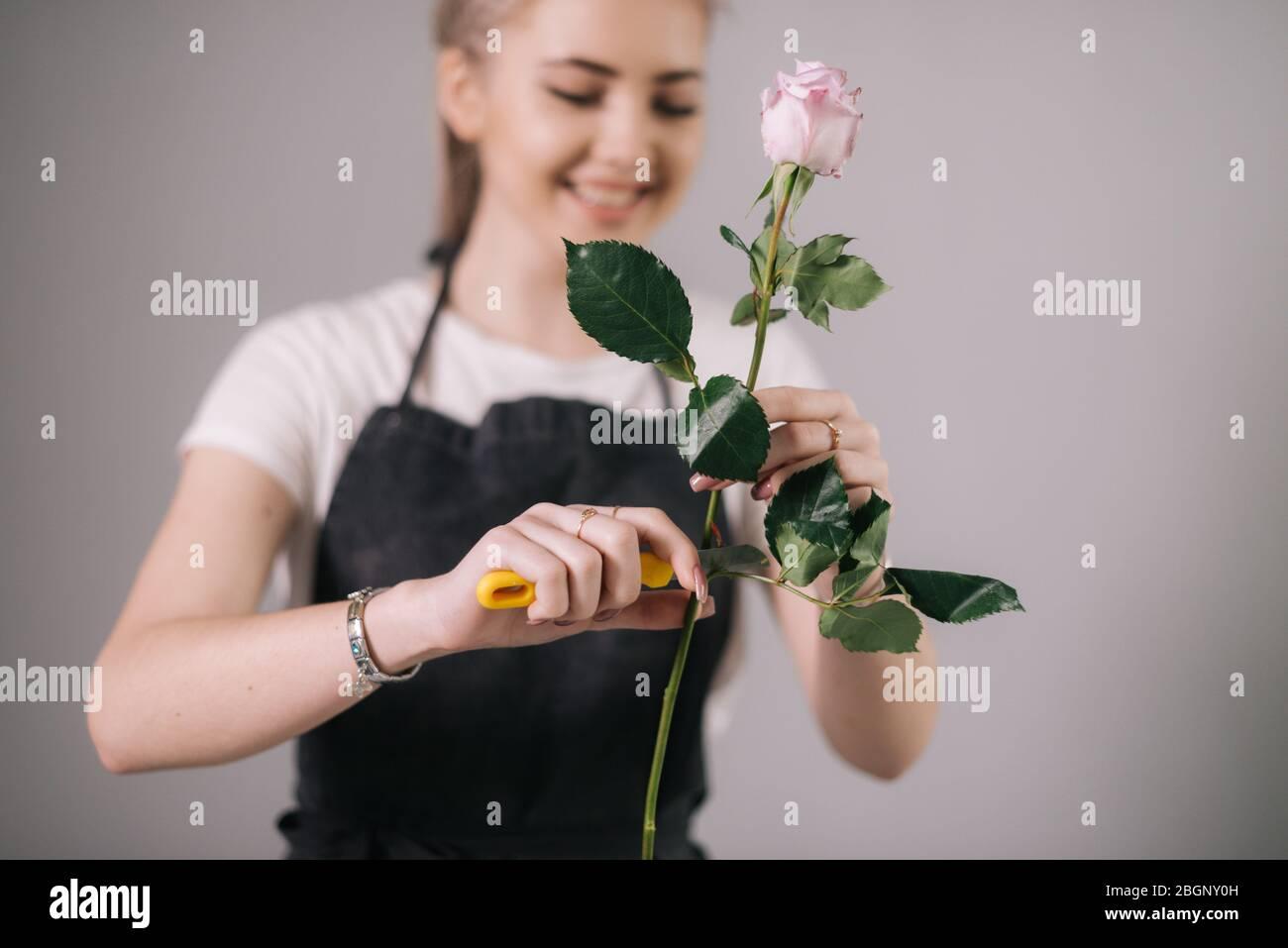 Lachende junge Frau Floristin tragen Schürze schneidet frische Rose Blume mit Schere Stockfoto