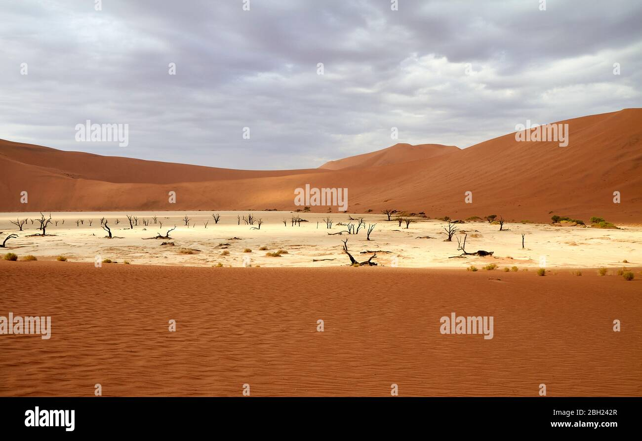 Namibia, Sossusvlei Pan umgeben von Wüstendünen Stockfoto