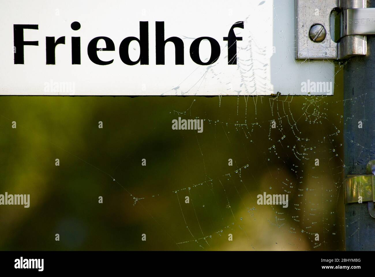 Ein mit Spinnweben beschriebter Wegweiser, der auf einen Friedhof in deutscher Sprache verweist. Stockfoto