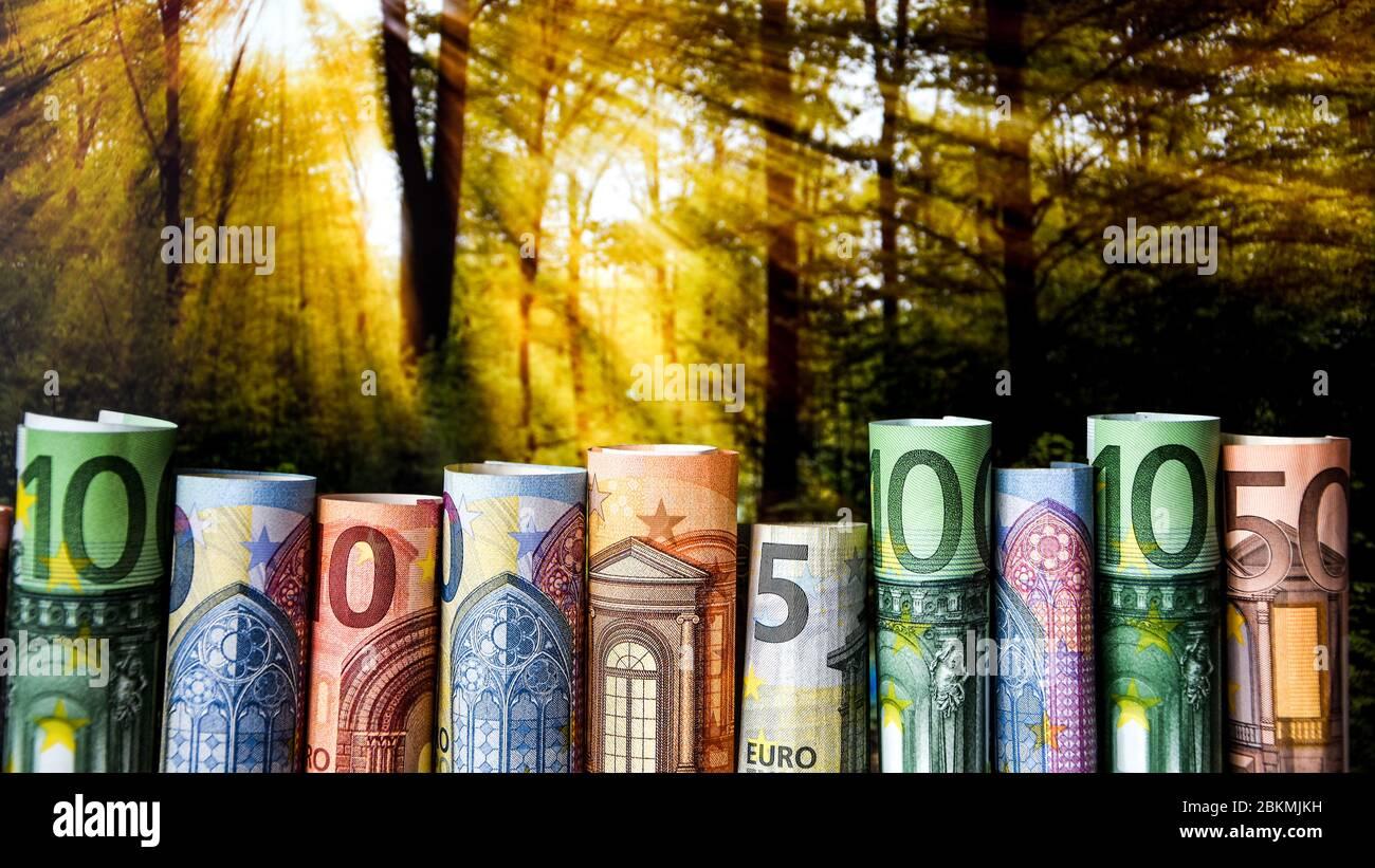 Gerollte Euro-Banknoten auf Naturhintergrund mit Sonnenlicht Stockfoto