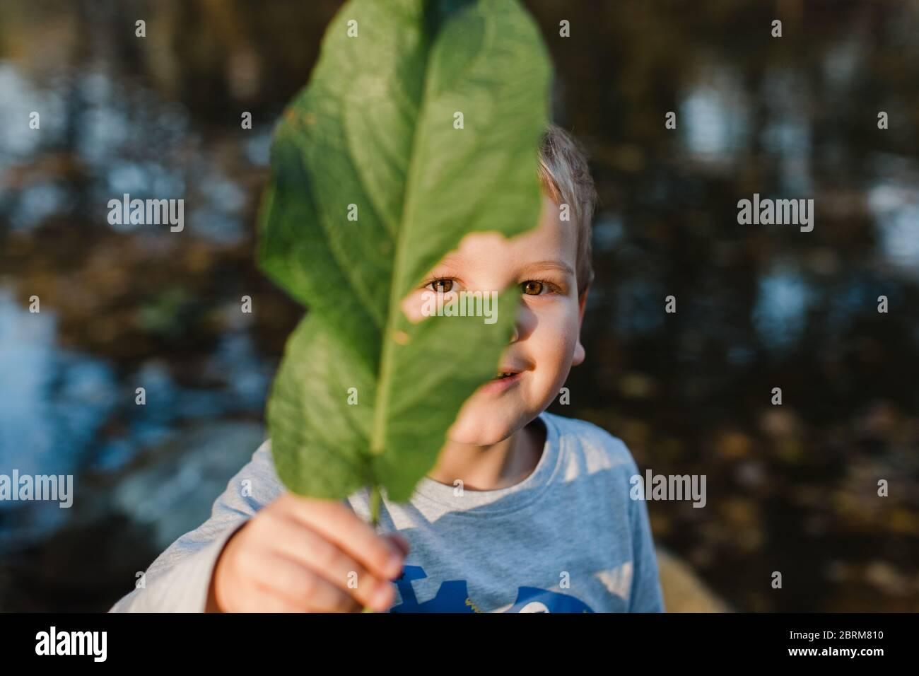 Porträt des jungen Jungen mit grünen Blatt. Nettes Kind, das grünes Blatt vor dem Gesicht hält und die Kamera anschaut. Stockfoto