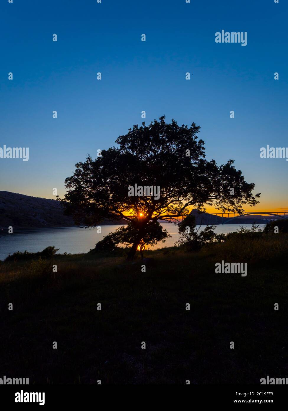 Sonnenuntergang Landschaft Brücke Festland zur Insel Krk Kroatien Blick durch dominanten Baum Stockfoto